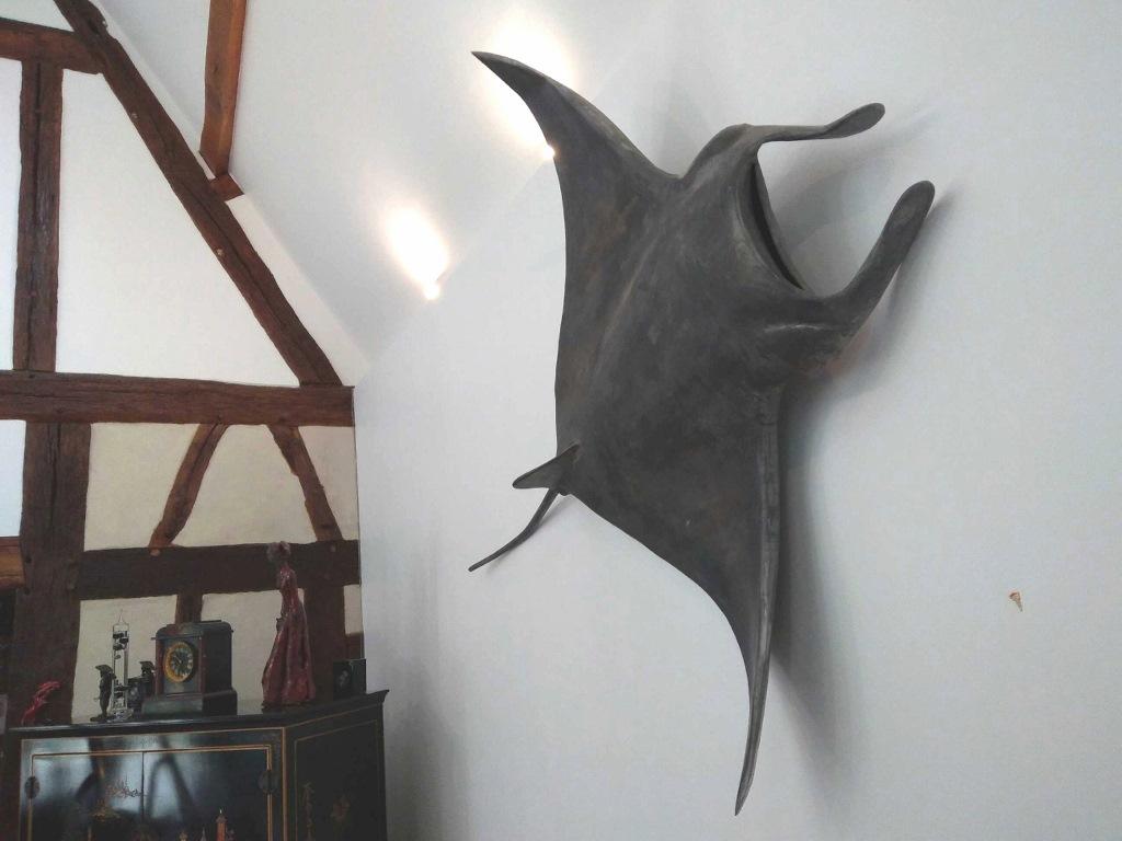 Raie Manta 1, envergure 1.35m (1024x768)